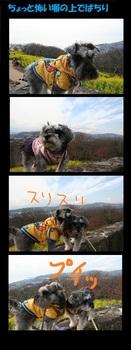 2010 二宮吾妻山公園 101.jpg