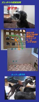 銭家訪問10年11月 ブログ1.jpg