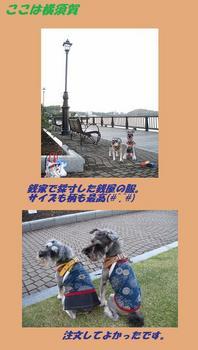 銭家訪問10年11月 ブログ2.jpg